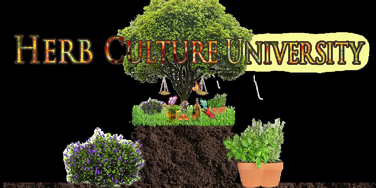 Herb Culture University